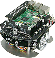 Raspberry Pi Mouse